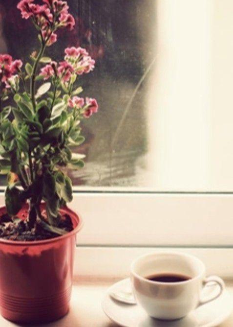 Cà phê, đắng hay ngọt?