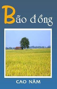 Bão Đồng